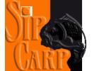 Sip Carp